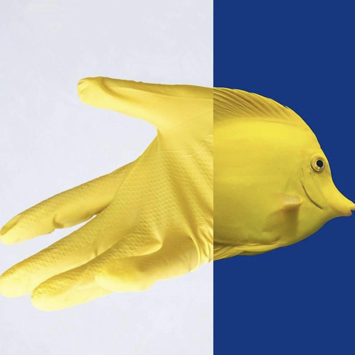 Hors paires- poisson gant